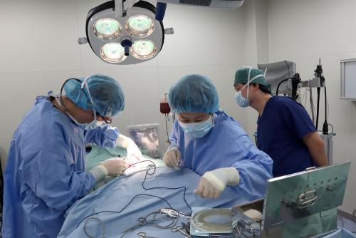 手術シーン